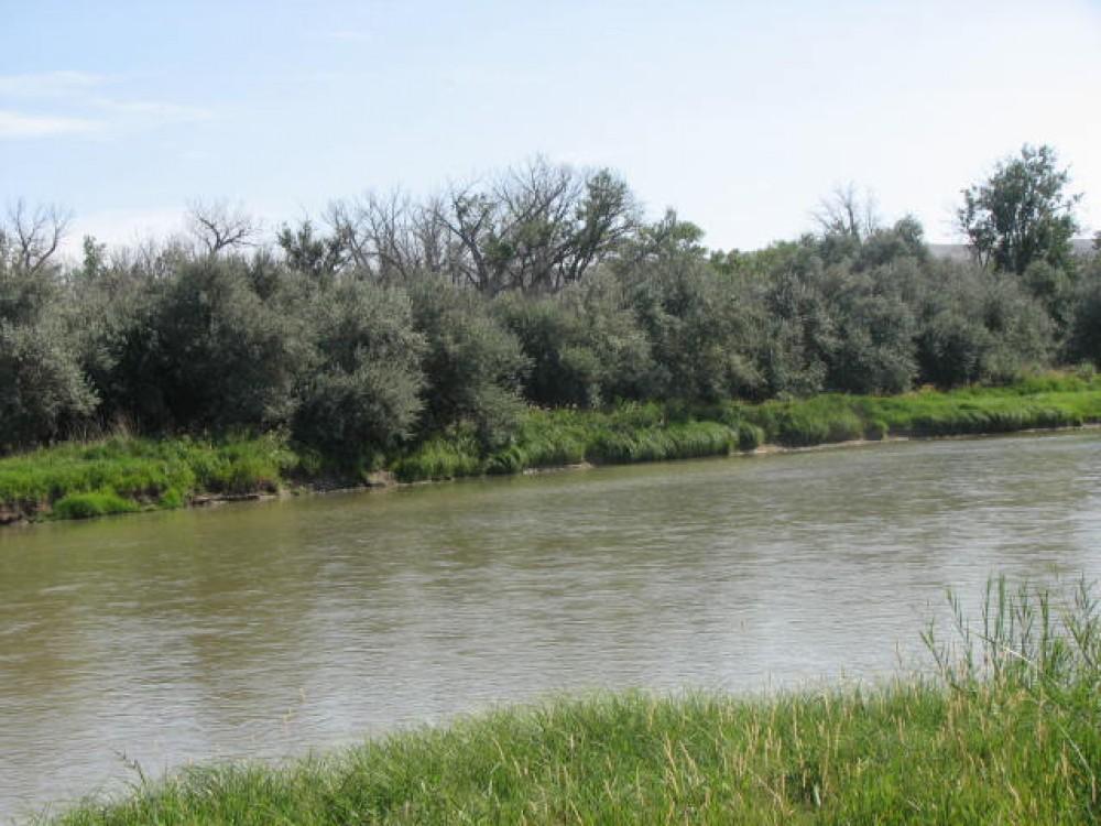Big horn river fishing and hunting retreat greybull for Bighorn river fishing