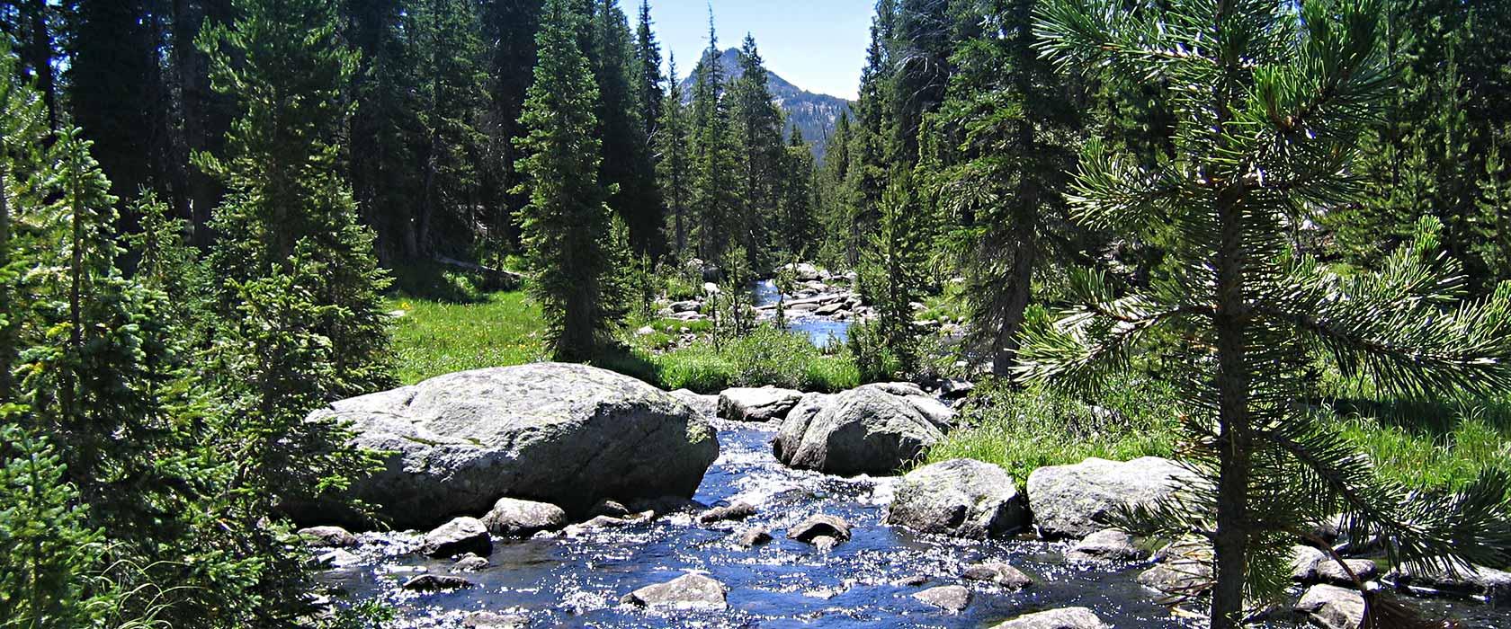 Stockade Creek / Search Wyoming MLS