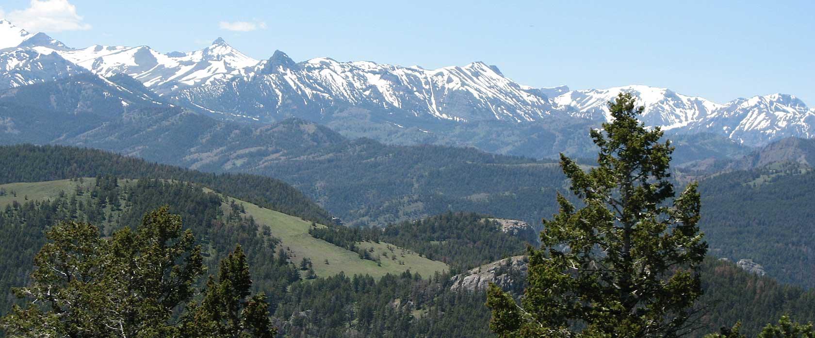 Absaroka Mountain Range / Testimonials