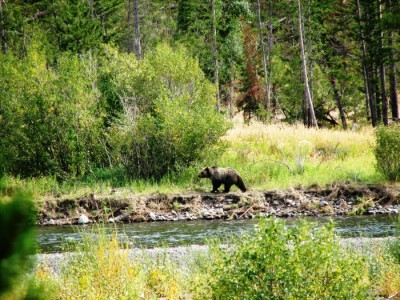 Wyoming fishing property for sale