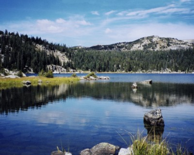 Powell Wyoming real estate