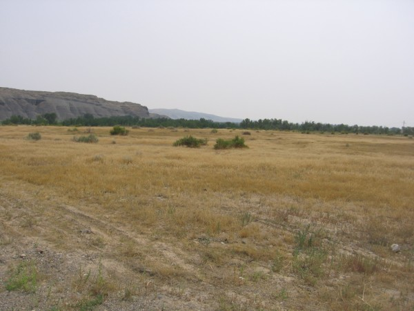 vacant land for sale in greybull wyoming