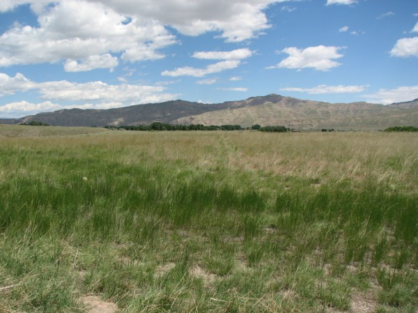 vacant land for sale wyoming
