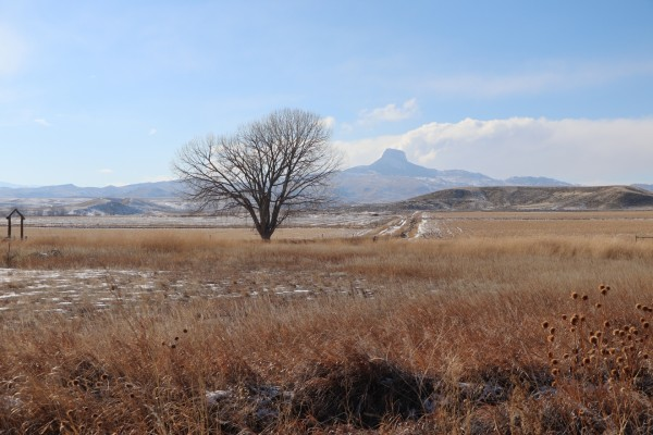 Northern Wyoming Land For Sale | Canyon Real Estate, Cody Wyoming